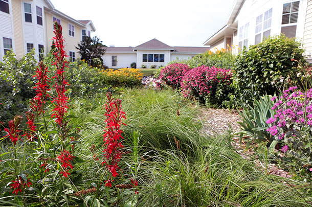 Commercial Landscaping Management and Maintenance in Appleton, WI