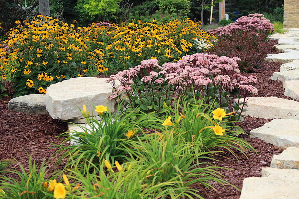 Landscaping appleton wi outdoor goods for Flowering landscape plants