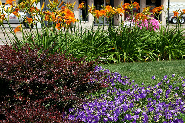 Landscaping Plantings: Trees, Perennials, Bulbs, Flower Beds, and Bushes in Appleton, WI
