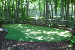 Putting Green in the Fox Valley
