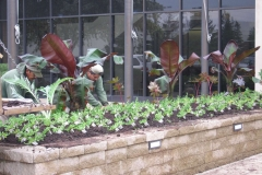 Commercial and Municipal Landscaping in the Fox Valley, WI