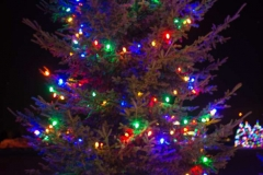 12212016-- Holiday Lighting Export-3