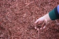 Red Mulch in Appleton, WI
