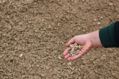 Gravel with Fines 3/4 in Appleton, WI