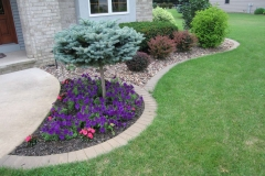 Shrubs and Bushes from Nursery in Appleton, WI