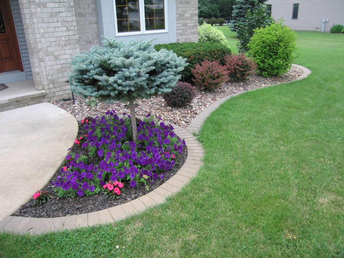 Bushes for landscaping popular landscaping groundcovers for Low bushes for landscaping