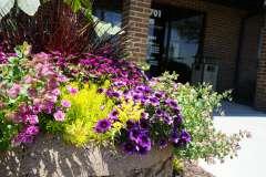 Summer Exterior Plantings in Appleton, WI