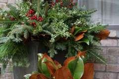 Designed Evergreen Pots for Winter Season