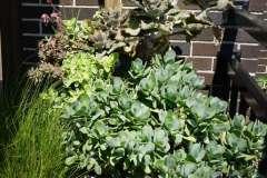 Custom Designed Planter Arrangements Near Appleton, WI