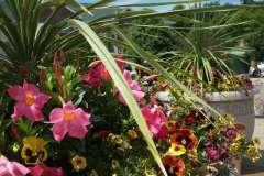 Custom Made Flower Arrangements in Appleton, WI