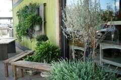Unique Planter Ideas Near Appleton, WI