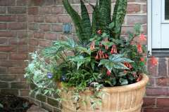 Seasonal Planters and Arrangements Near Little Chute, WI