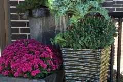 Fall Seasonal Planter Arrangement with Pumpkins, Near Little Chute WI