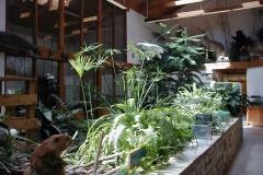 Commercial Landscaping Construction and Indoor Teranium in Wisconsin