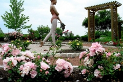 Commercial and Municipal Landscaping Outdoor Garden in Wisconsin