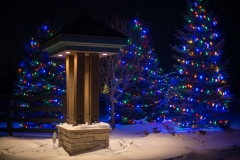 12212016-- Holiday Lighting Export-2