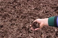 Black Cherry Mulch in Appleton, WI