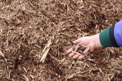 Cedar Mulch in Appleton, WI