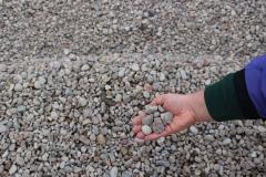 Mississippi Pebble 3/4 Stone in Appleton, WI