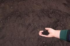 Organic Leaf Compost in Appleton, WI