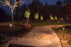 Flagstone Walkway with Lights and  Up-lit Trees in Green Bay, WI