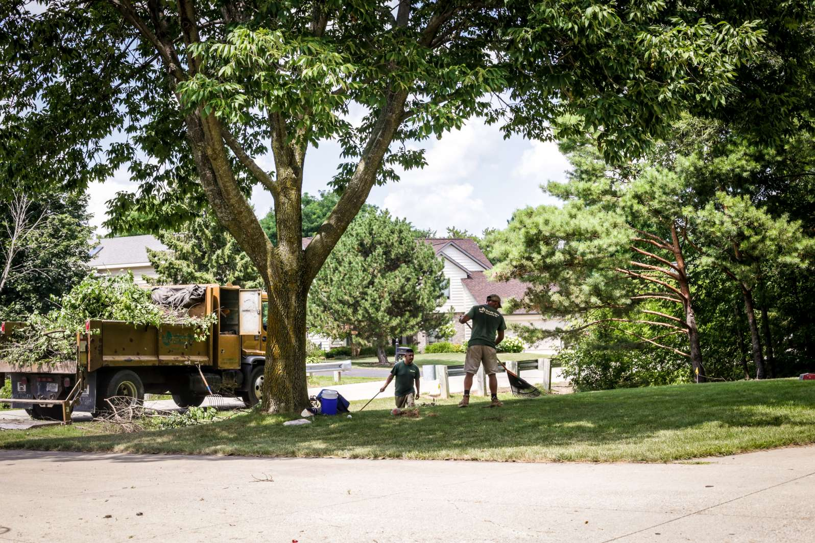 Residential Landscape and Lawn Care in Appleton, Wisconsin
