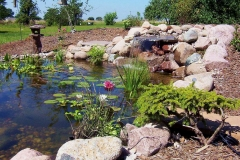 Pond with Lilly Pads, Waterfall, and Cobble Border